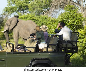 Side view of a group of tourists on safari watching elephant