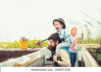 Side view kid in fedora hat planting flower in greenhouse. Brutal man with long beard and mustache holding cute boy on his shoulders. Happy childhood concept.