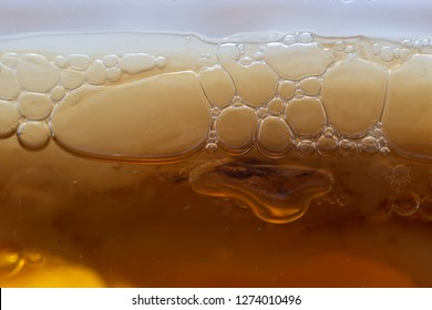 Side view of Kombucha Mushroom with air bubbles from fermentation process, Homemade Fermented Raw Kombucha Tea. Selective focus.