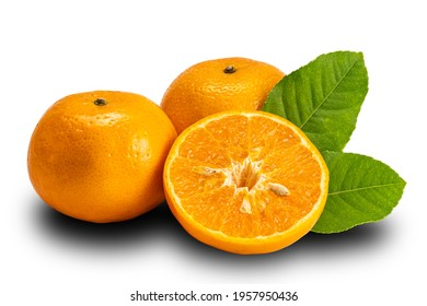 Side view of mandarin orange whole and half with leaves on white background with clipping path. Mandarin oranges or Citrus reticulata are in the same family as oranges, lemons, limes, and grapefruit.