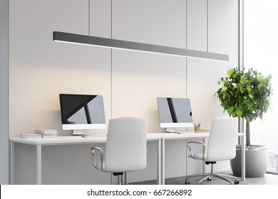 Side view of an open space office interior with two computers standing on tables. White walls, white chairs. A plant in the corner. 3d rendering mock up