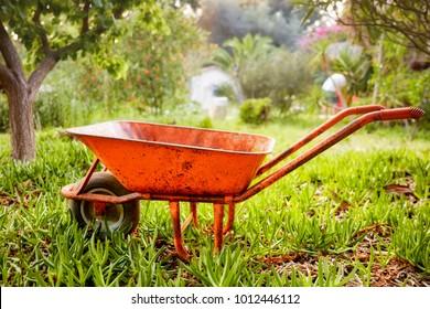 Side view of an orange wheelbarrow in a garden