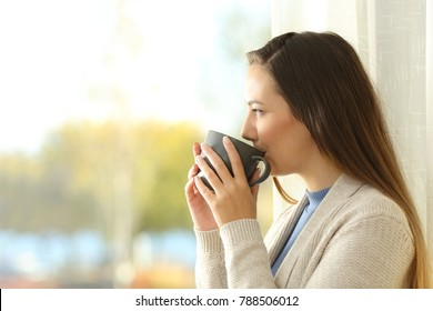 Side view portrait of a relaxed lady drinking coffee and looking outdoors through a window at home