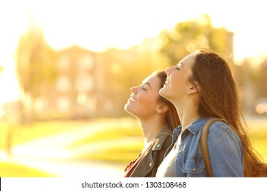 Side view portrait of two happy women breathing fresh air in a park at sunset