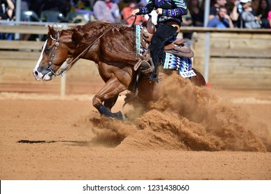 The side view of a rider in jeans, cowboy leather chaps and shirt on a reining horse slides to a stop in the red clay an arena.