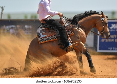 The side view of a rider sliding the horse in the sand.