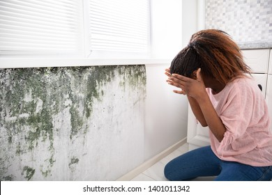 Side View Of A Shocked Young Woman Looking At Mold On Wall
