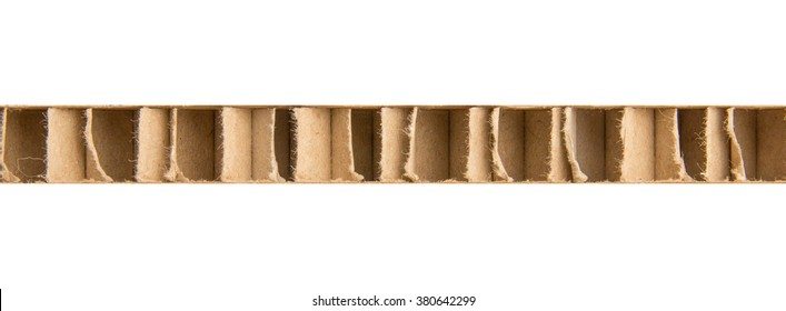 Side view of thick corrugated cardboard with transverse structure. Vertical waves of board. Section view of side view.