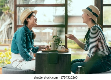 side view of two asian girl friends laughing chatting indoors in kyoto local restaurant. happy sisters eating snack and drinking tea during tea ceremony. ladies enjoy afternoon leisure time by garden