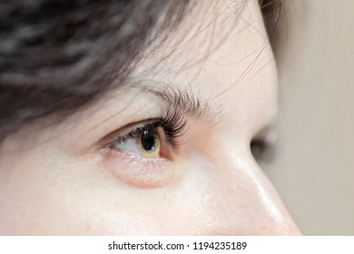 Side view of woman eye with long eyelashes - focus on eye