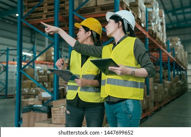 side view of young warehouse workers women working together. two girl colleagues point finger at shelf in storehouse. group of female partners discussing and talking while using tablet in stockroom