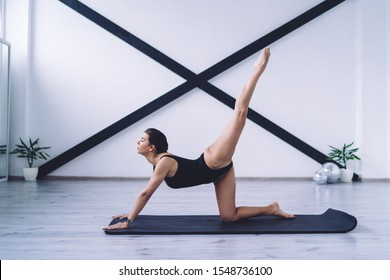 Side view of youthful calm sporty female enjoying active lifestyle and practicing vyaghrasana yoga position on mat in light fitness room