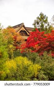 Side of Zenkoji temple in autumn season, Nagano, Japan