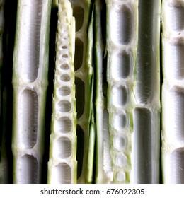 Side-Sliced Bamboo Shoots