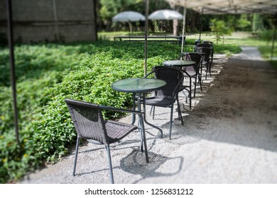 Sidewalk cafe seats in garden, stock photo
