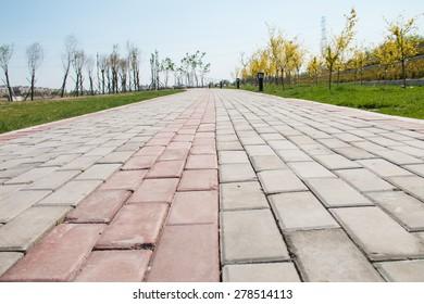 Sidewalk in the park