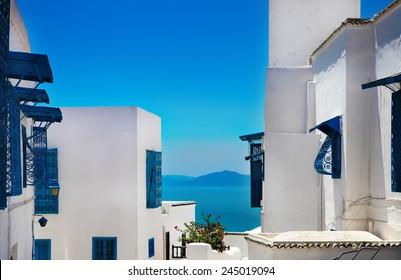 Sidi Bou Said. La Gulett, Tunisia. White and blue town