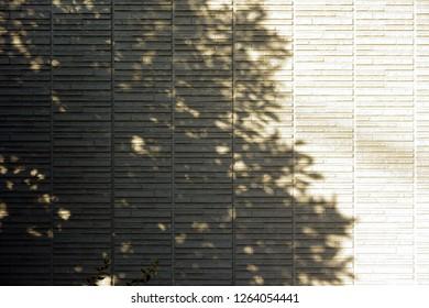 Siding exterior wall and tree shadow