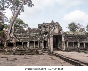 Siem Reap, Cambodia - February 19, 2018:view of one of the temples of Angkor Wat, at Siem Reap, Cambodia. A tree is growing on the temple.