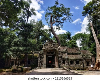 Siem Reap, Cambodia - September, 2018: Ta Prohm, a temple at Angkor, Siem Reap province. The temple was used as a location in the Tomb Raider film.