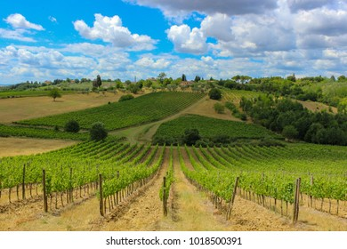 SIENA, ITALY - JULY 1, 2017 -Scenic view of vineyard against cloudy sky in a summer day