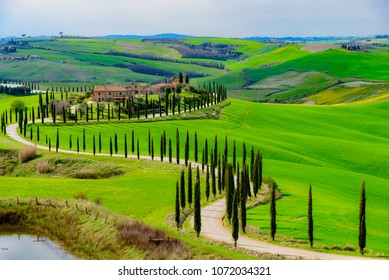 Siena, Tuscany - April 08 2018:  Tuscany with cypress road, idyllic seasonal nature landscape in spring in the province of Siena in Italy