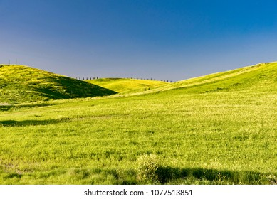 Siena, Tuscany -April 21 2018:  scenic panorama of the green hills of Pienza, in spring with green hills and meadows blooming in the land of Brunello wine and of the production of Cheese