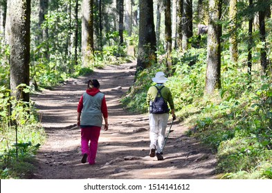 Sierra Chincua, Michoacan State, Mexico, January 14, 2015: Two women hiking to the Sierra Chincua Monarch Butterfly Sanctuary that sits at the heart of the Monarch Butterfly Biosphere Reserve.