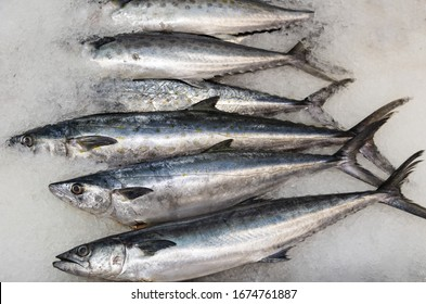 Sierra mackerel for sale at a fish market in San Pedro, California.