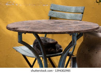 Siesta. Cat sleeping at old garden terrace. Weathered yellow stucco wall background. Relaxation concept. Selective focus on the table.