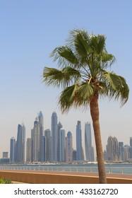 sight of Dubai