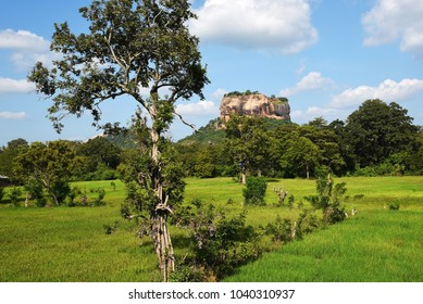 Sigiriya fortress Sri Lanka