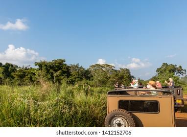 Sigiriya, Sri Lanka - January 24, 2019: Safari at Minneriya National Park, Sigiriya, Sri Lanka.