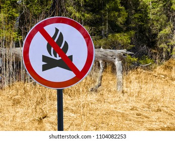 Sign ban bonfires on the background of forest and dry grass and trees. Ban fire in woods and park.