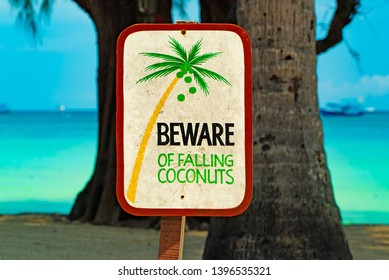 "Sign ""Beware of falling coconuts"" on Koh Tao in Thailand, Asia"