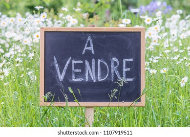 "Sign board with text in french ""for sale"" on daisies meadow"