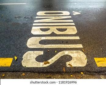 sign of bus lane of Sao Paulo city