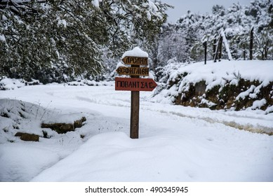 """Sign by the forest road at winter, Mount Athos, translations of writing is """"Port Arsana, Monastery Esphigmenou and Giovanitsa Port""""."""