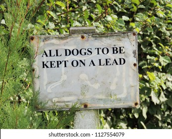 """Sign in the countryside reads, """"ALL DOGS TO BE KEPT ON A LEAD"""""""