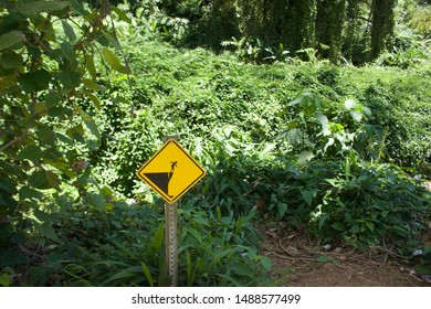 Sign depicting the danger of falling off an unstable cliff in the rainforest.