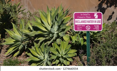 A sign in drought-tolerant landscaping stating that reclaimed water is used for irrigation