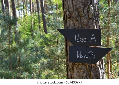 Sign in the forest says Plan A and Plan B