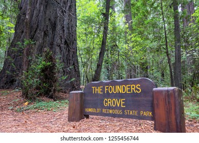 Sign for the Founders Grove in Humboldt Redwoods State Park in California