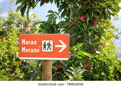 Sign with hiking symbol and apple trees in Merano, South Tyrol