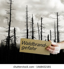 "Sign with the inscription ""wildfire risk"". In the background a dead forest in the Harz National Park."