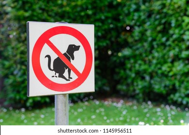 Sign No Dog Poop on the lawn of green grass