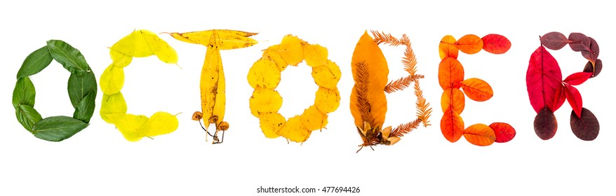 """Sign """"October"""" made of autumnal natural objects. Colorful leaves and mushrooms arranged into the """"October"""" text. Autumnal mood."""