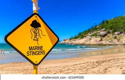 A sign on the beach to warn swimmers in Queensland Australia of marine stingers in the water