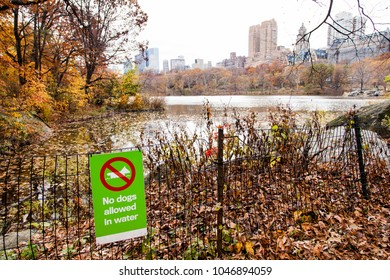 Sign on a fence in Central Park, New-York, saying that dogs are not allowed in the water of the lake.