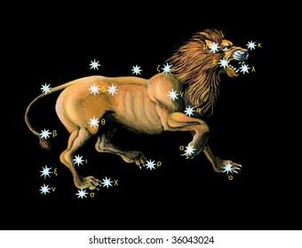 Sign on zodiac constellation Lion (Leo)